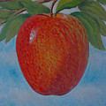 Apple 1 In A Series Of 3 by Don Young
