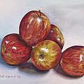 Apple Assortment by Christal Carter