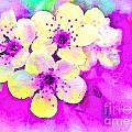 Apple Blossoms In Magenta -  Digital Paint by Debbie Portwood