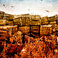 Apple Crates And Crows by Bob Orsillo