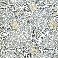 Apple Design 1877 by William Morris