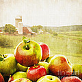 Apple Picking Time by Edward Fielding