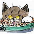 Apple Pie Vs. Hungary Cat by Ellen Miffitt