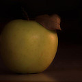 Apple With Leaf by David Stone