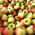 Apples by Olivier Le Queinec