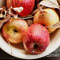 Apples by Rebecca Cozart