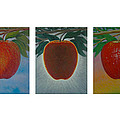 Apples Triptych by Don Young