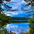 Approaching Bubb Lake by David Patterson