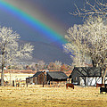 Approaching Storm At Cattle Ranch by Frank Wilson