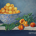 Apricots And Peaches by Portraits By NC