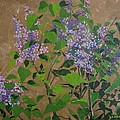 April Lilacs by Leah  Tomaino