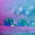 Aqua Blue Water Droplets by Kaye Menner