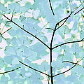 Aqua Blues Greens Leaves Melody by Jennie Marie Schell
