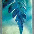 Aqua Fern by WB Johnston
