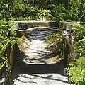 Aquaduct by Carol  Bradley