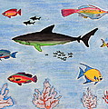 Aquarium by Sean Hughes