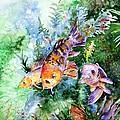 Aquarium by Zaira Dzhaubaeva