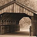 Arabia Mountain Covered Bridge by Tara Potts