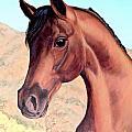 Arabian Beauty by Art By - Ti   Tolpo Bader