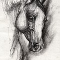 Arabian Horse Drawing 12 by Angel Ciesniarska