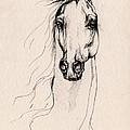 Arabian Horse Drawing 25 by Angel Ciesniarska