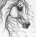 Arabian Horse Drawing 48 by Angel Ciesniarska