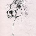 Arabian Horse Portrait 2014 02 25 by Angel Ciesniarska