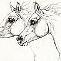 Arabian Horses 2014 02 25 by Angel Ciesniarska
