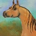 Arabian by Jann Elwood
