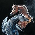 Arabians by Bj Redmond