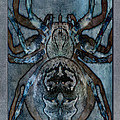 Arachnophobia V by WB Johnston