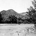 Aravaipa Creek by Larry Ward