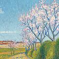 Arbes En Fleurs A L'entree De Cailhavel by Achille Lauge