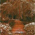Arbor Steps by Tim Allen