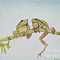 Arboreal Frogs In Pastel by Kate Sumners