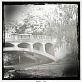 Arboretum Bridge by Justine Connolly
