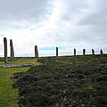 Arc Of Stones At The Ring Of Brodgar by Denise Mazzocco