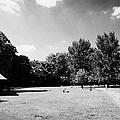 archbishops park lambeth London England UK by Joe Fox