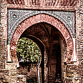 Arched  Gate by Weston Westmoreland