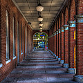 Arches And Columns by Marvin Spates