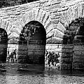 Arches by Greg Fortier