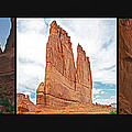 Arches National Park Panel by SC Heffner
