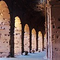 Arches Of The Roman Coliseum by Jan Moore
