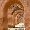 Arches by Sophie Vigneault