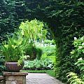 Archway by Joyce Baldassarre
