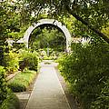 Archway by Marilyn Hunt
