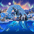 Arctic Harmony by MGL Meiklejohn Graphics Licensing