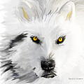 Arctic Wolf With Yellow Eyes by Angela Stanton