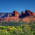 Arizona Beauty by Deb Buchanan