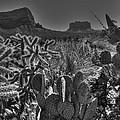 Arizona Bell Rock Valley N6 by John Straton
